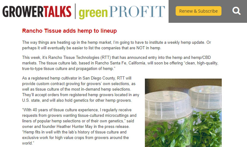 GrowerTalks Rancho Tissue Article